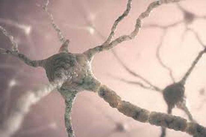 Почему возникают эпилептические приступы