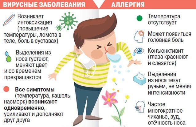 Разница между простудой и аллергией