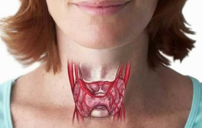 Как правильно сдавать анализы на гормоны щитовидной железы сдавать кровь натощак или нет, как подготовиться к сдаче, можно ли есть перед сдачей