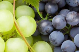 отравление немытым виноградом