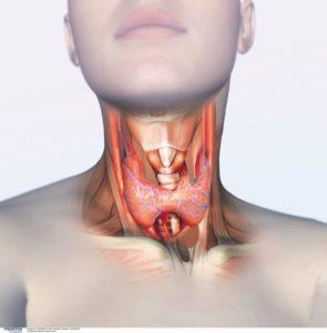 заболевание щитовидной железы