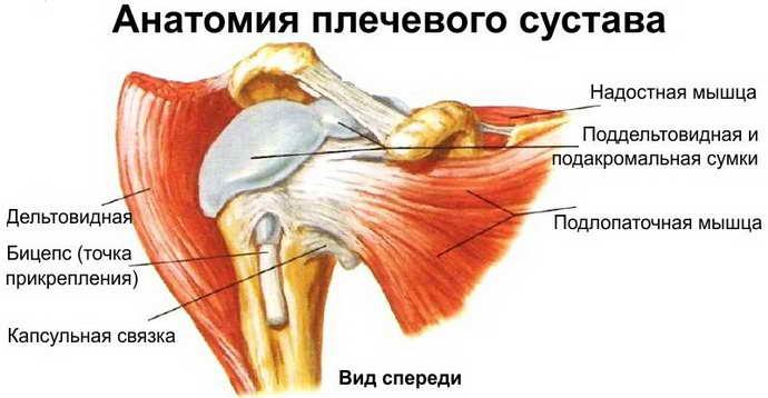 остеохондроз плечевого сустава причины