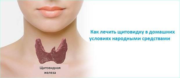 как лечить щитовидку в домашних условиях народными средствами