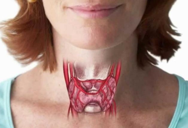 Антитела к тиреоглобулину (АТ ТГ) повышены что это значит