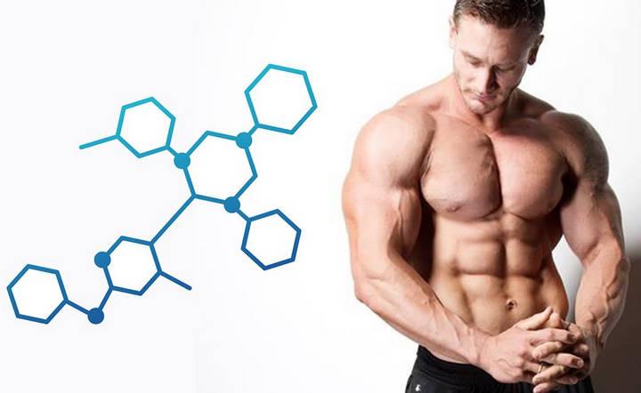 Мужские гормоны