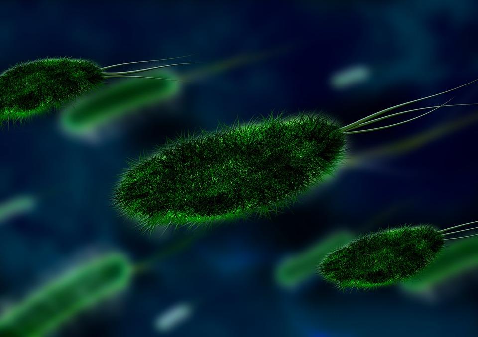 Мизофобия: боязнь микробов
