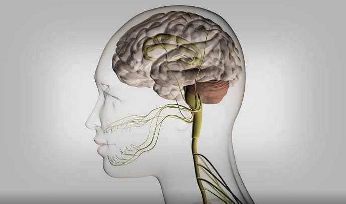 панические атаки при шейном остеохондрозе особенности