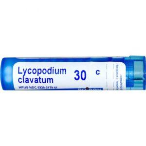 Ликоподиум