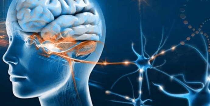 Ангиома головного мозга: причины, симптомы, лечение