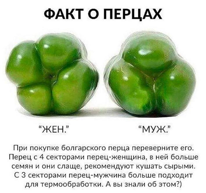 Болгарский перец при грудном вскармливании