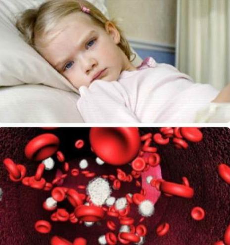 Как повысить тромбоциты в крови препараты, народные способы, продукты