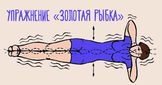 Методика Ниши: укрепление капилляров