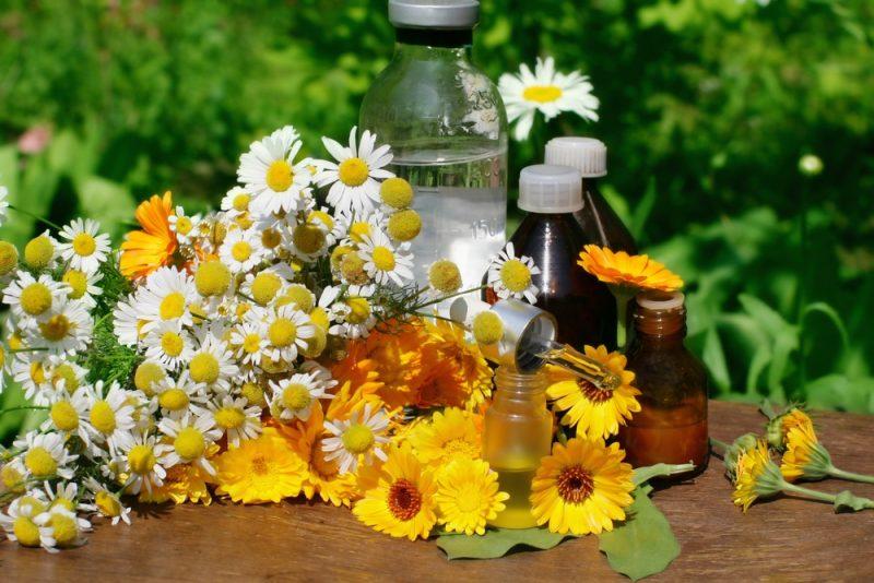 Народные средства лечения аденоза