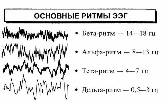 ээг головного мозга ребенку диагностика