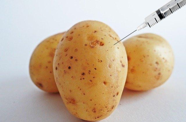 Картофельная среда для бактериологического исследования