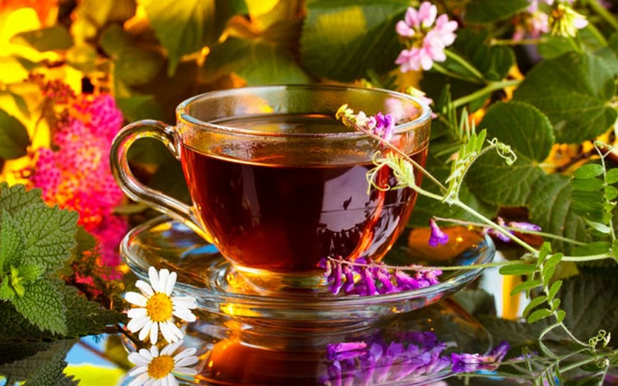 Травяной чай для лечения мастопатии