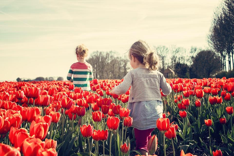 Как формируется развитие личности ребенка