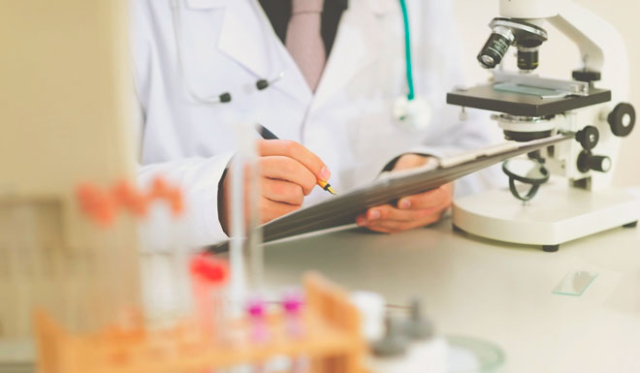 Показатели кальция в крови у женщин: норма и опасность отклонений
