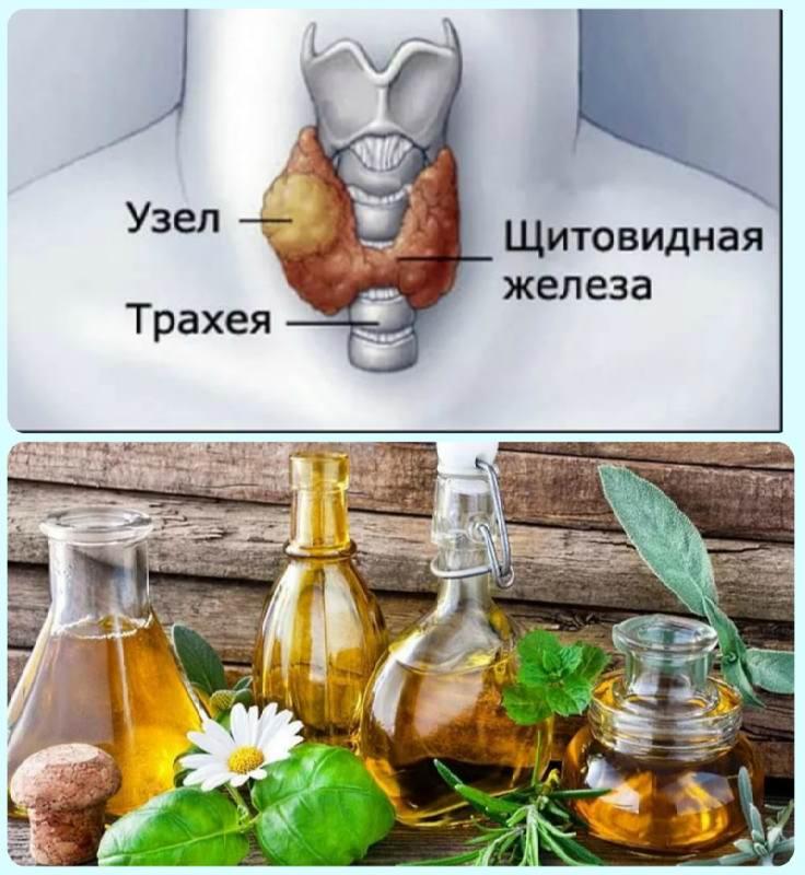 народные средства при лечении щитовидной железы