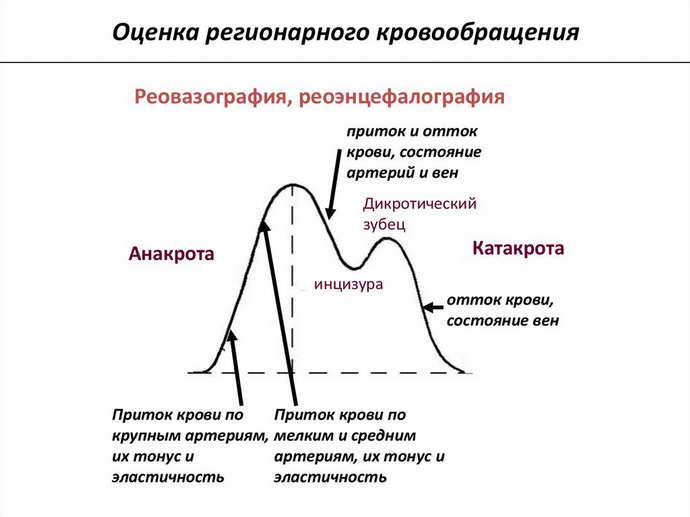 Роэнцефалография