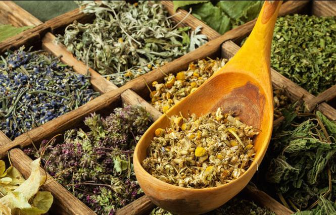 Травы, понижающие давление лучшие лекарственные растения и сборы