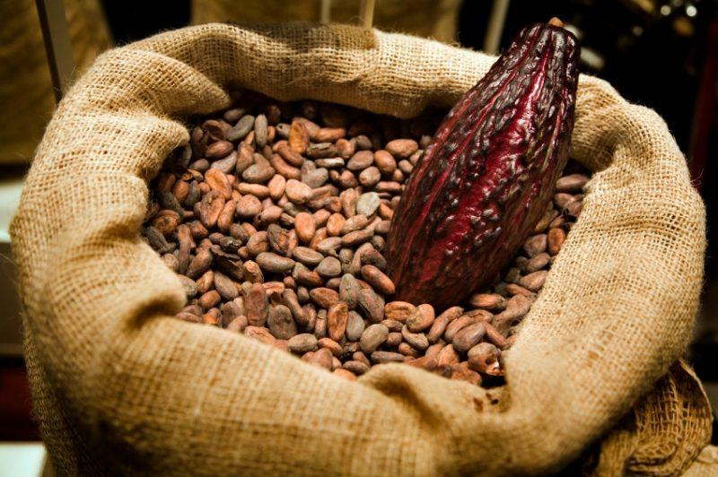 Какао при грудном вскармливании