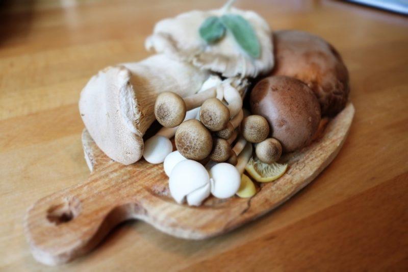 Разрешенные грибы при ГВ