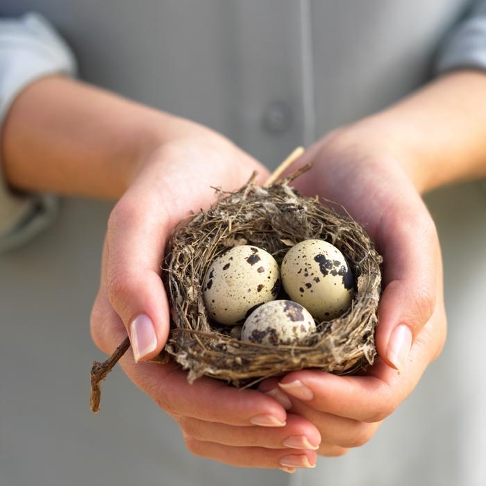 Перепелиные яйца при гв