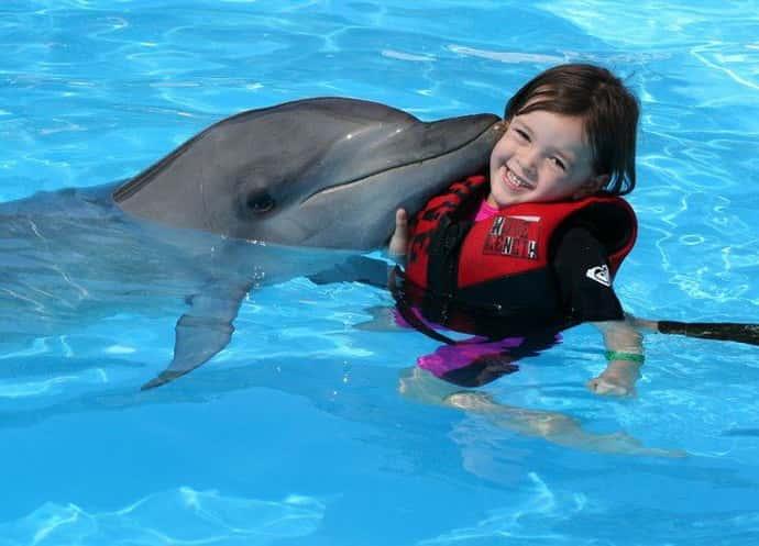 дельфинотерапия в качестве реабилитации детей с дцп