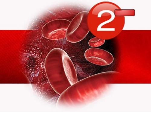 Группа крови 2 отрицательная характеристика, особенности, рекомендации