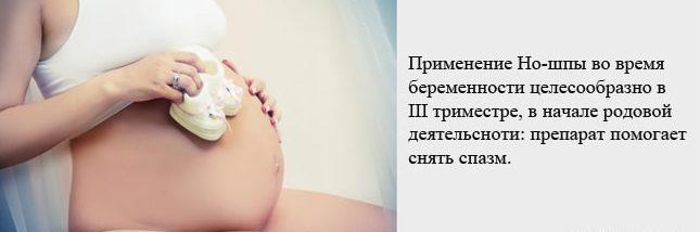 Но-шпа при беременности